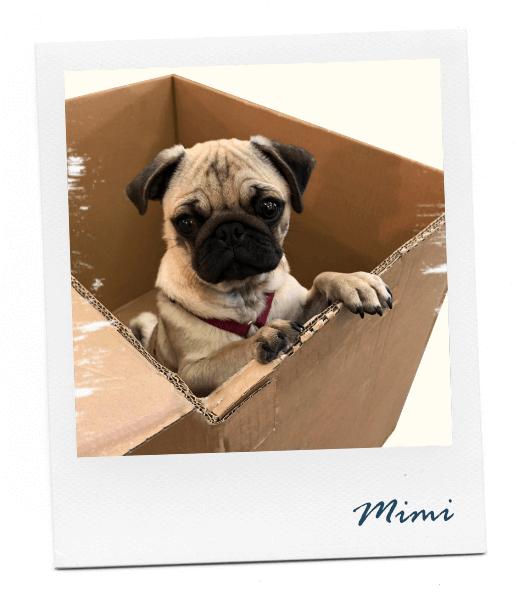 Mimi Polaroid